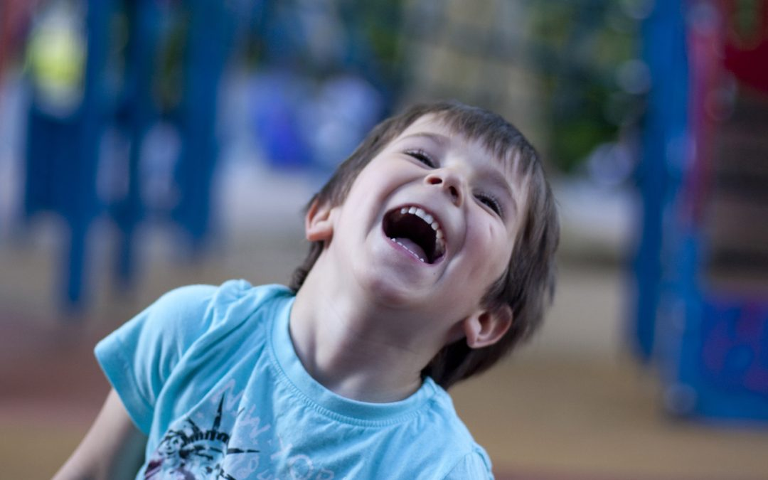 Choosing Playground Equipment For A Special Educational Needs School
