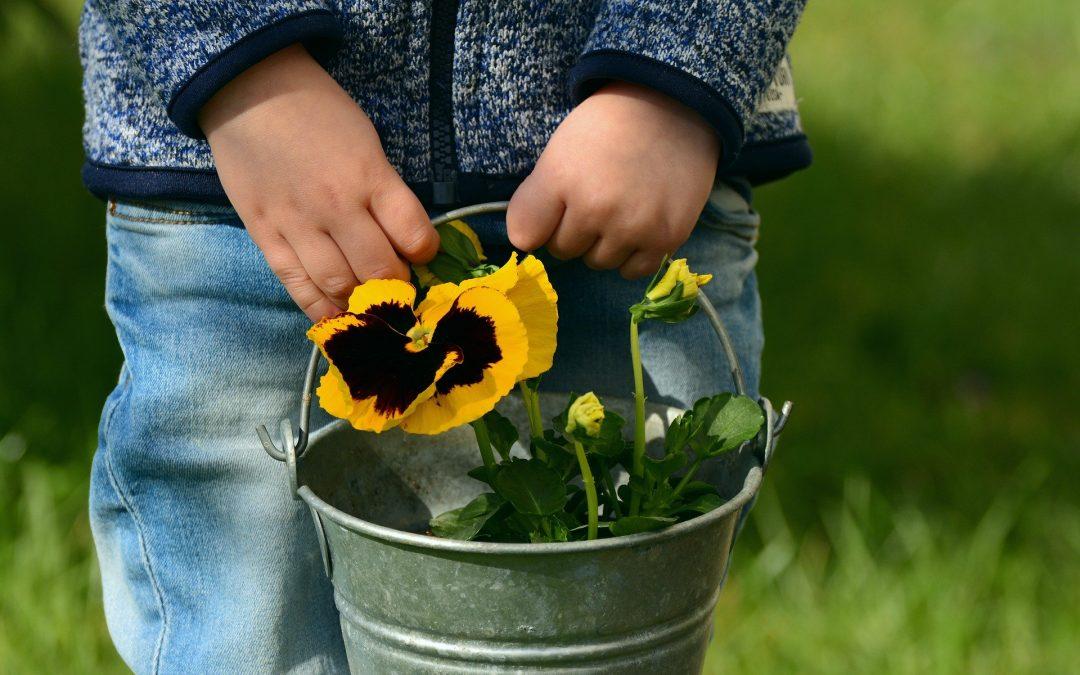 Benefits Of Gardening For School Children